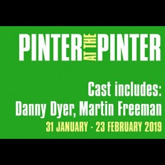 Pinter: A Slight Ache/The Dumb Waiter