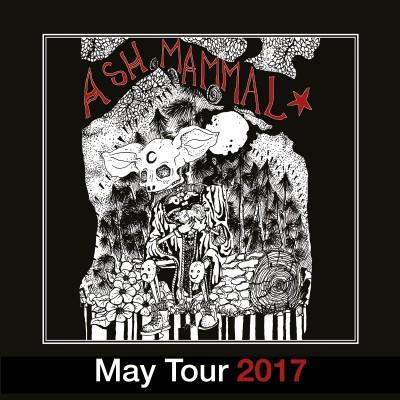 Ash Mammal  tickets