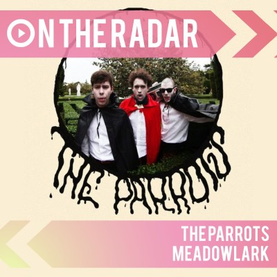 An image for The Parrots // Meadowlark