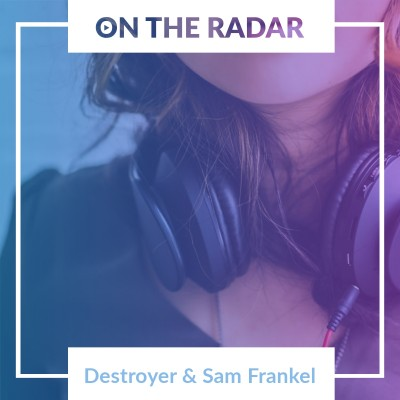 An image for Destroyer // Sam Frankl