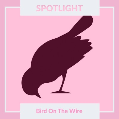 An image for Spotlight On: Bird On The Wire