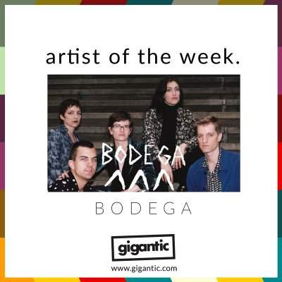 An image for AOTW // BODEGA