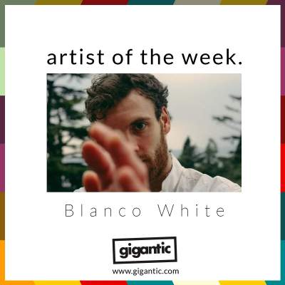 An image for AOTW // Blanco White