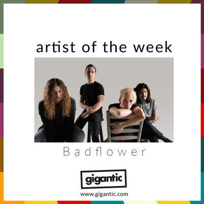 An image for AOTW // Badflower