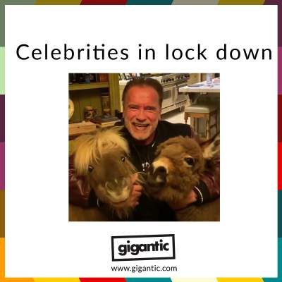 An image for Celebrities In Lockdown