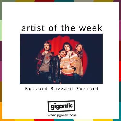 An image for AOTW // Buzzard Buzzard Buzzard