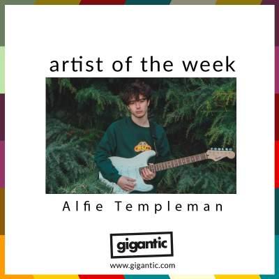 An image for AOTW // Alfie Templeman