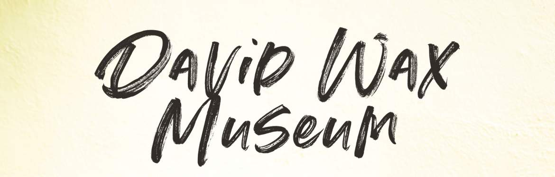 DAVID WAX MUSEUM tickets