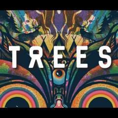 2000Trees