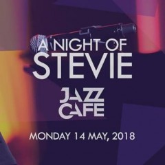A Night of Stevie