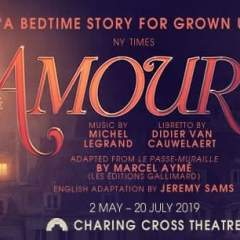 Amour<br>&bull; Was £33.00 Now £25.00 Saving £8.00