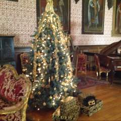 Friday tours at Newstead Christmas