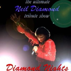 Mike Leighs Diamond Nights