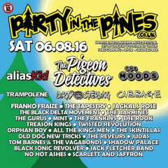 Party In The Pines Festival