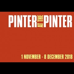 Pinter: One For The Road/New World Order/Mountain Language/Ashes to Ashes
