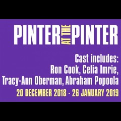Pinter: Party Time/Celebration