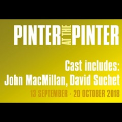 Pinter: The Lover/The Collection