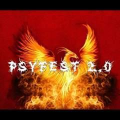 Psyfest 2.0