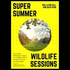 Super Summer Wildlife Sessions