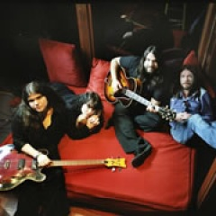 The Magic Numbers image