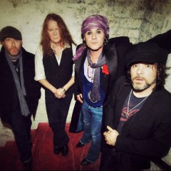 The Quireboys image