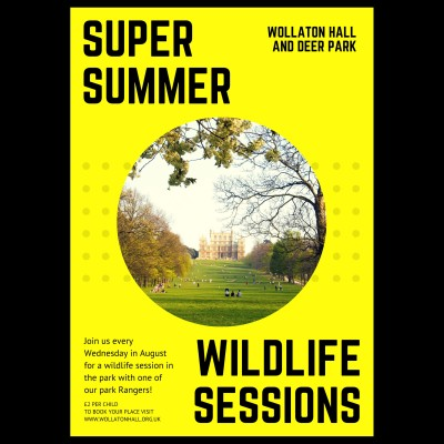 Super Summer Wildlife Sessions  tickets