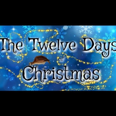 The Twelve Days of Christmas by Distraction Theatre tickets