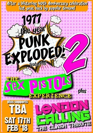 1977 - The Year Punk Exploded 2