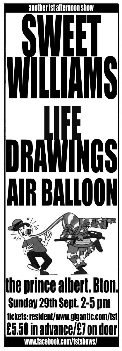 An afternoon with Sweet Williams/ Life Drawings/ Air Balloon
